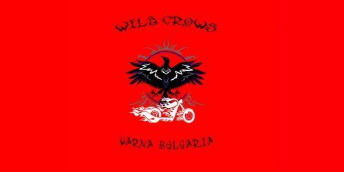 wild crows лого