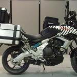 На сафари с Kawasaki Versys 2