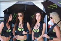 Секси мацките в падока на MotoGP Индианаполис 09