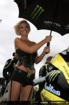 Секси мацки в падока на Арагон GP 16