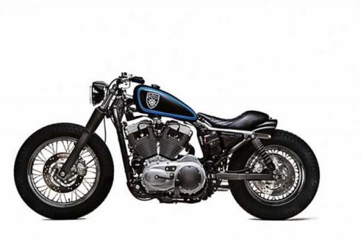 Harley-Davidson Stellalpina по италианските върхове (ВИДЕО) 07