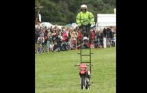 Моторист носещ стълба на мотора си причини 3 катастрофи 07